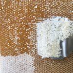 Entdeckelung der Honigwabe